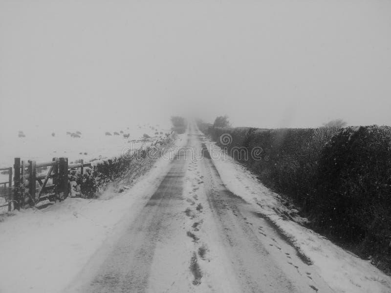 Snowy road royalty free stock photos