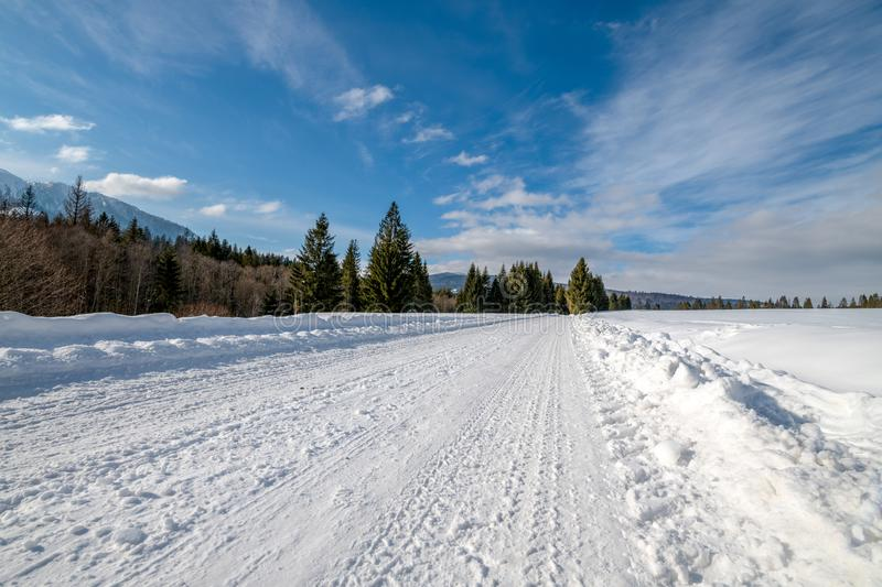 Snowy road in the forest seen from a different perspective royalty free stock images