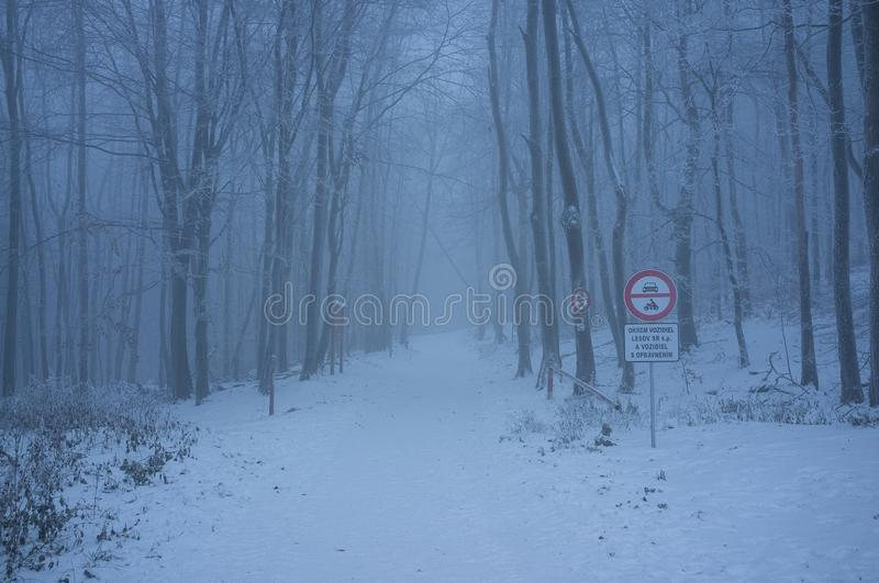 Snowy Road in Little Carpathian Mountains in Cold Winter Morning royalty free stock images