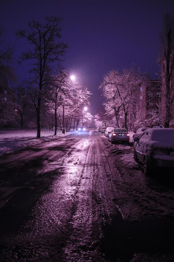 Snowy road in the night city with snowfall. Winter trees. stock photography