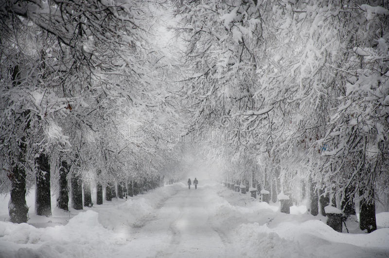 Snowy road. On snowy road are people royalty free stock photo