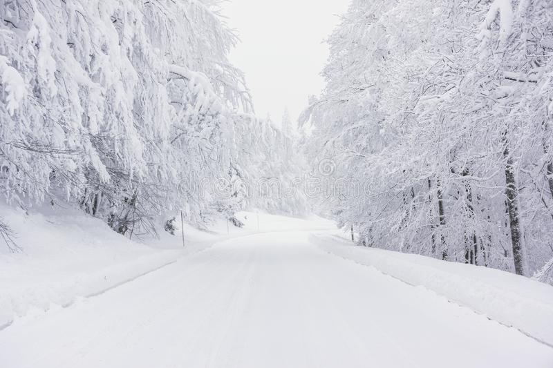 A snowy road in the mountains stock photography