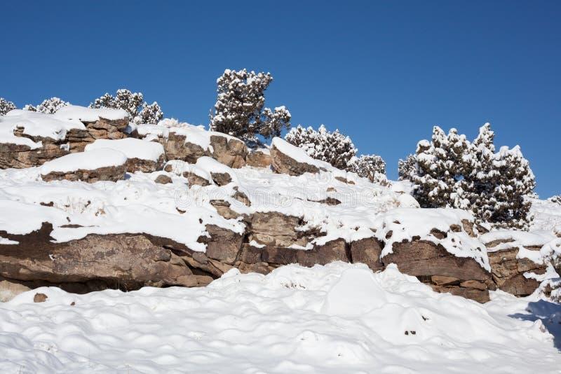 Snowy Rocky Hill con i ginepri immagini stock libere da diritti