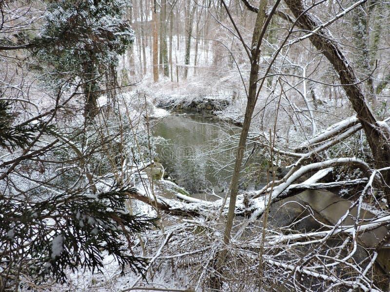 Snowy Scape stockbilder