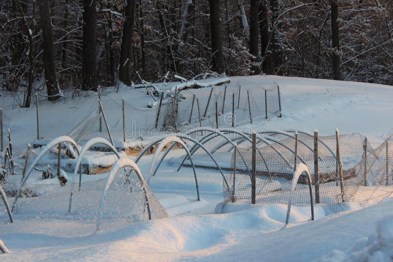 Snowy scene with garden beds covered with inches of deep snow and ice, signs that it`s still Winter. Several vegetable garden beds in backyard, all covered under royalty free stock photos