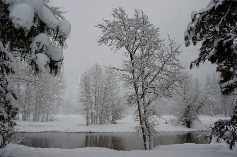 Snowy Scene Merced River royalty free stock image