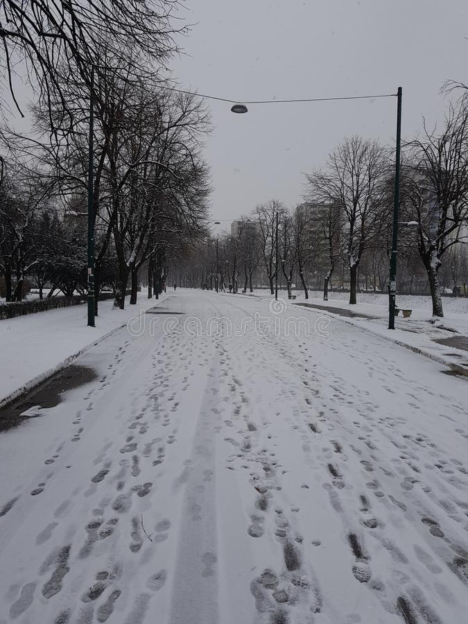 Snowy stock photos