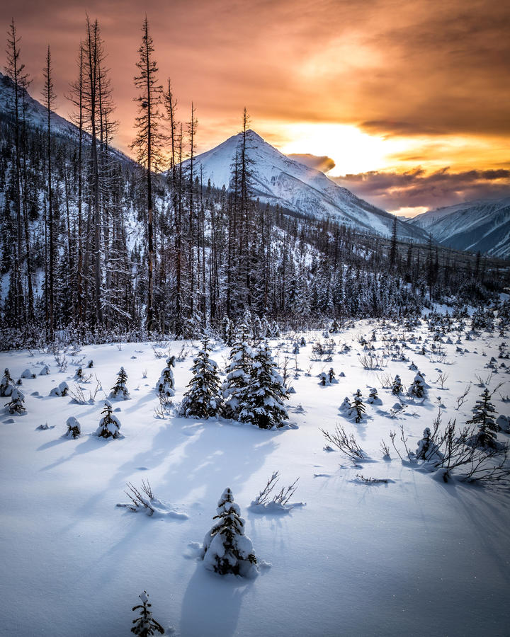 Snowy-Sonnenuntergang-Wiese unter Zinnoberrot-Spitze lizenzfreie stockfotografie