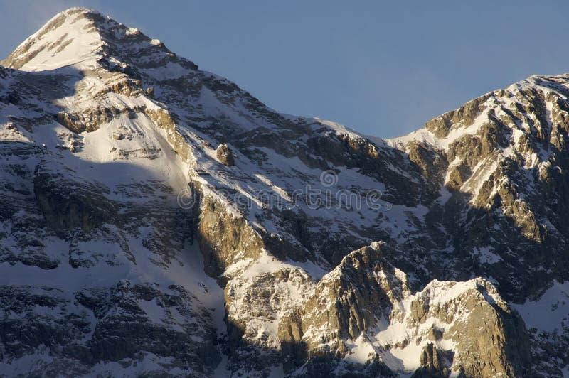 Snowy-Spitze lizenzfreies stockfoto