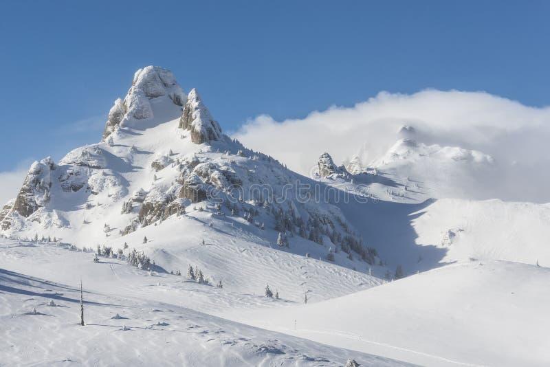 Snowy-Spitze stockbilder