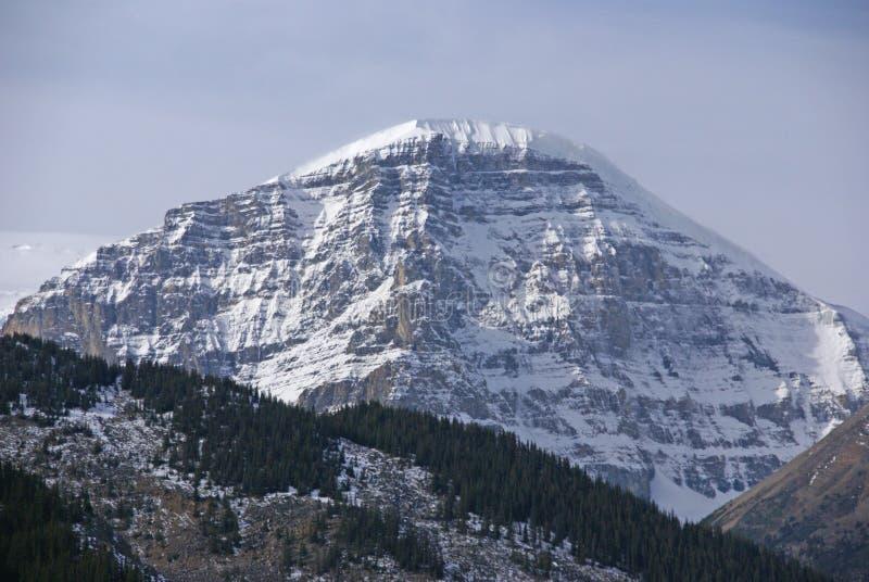 Snowy-Spitzen in den Rockies lizenzfreies stockbild