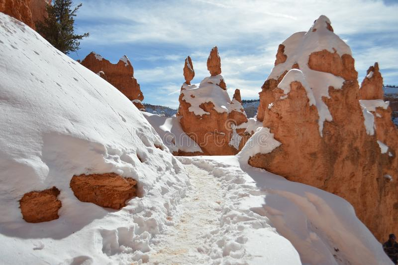 Snowy-Spur in Bryce Canyon, Utah lizenzfreie stockbilder