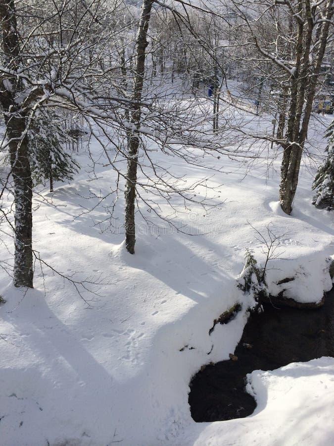 Snowy-Steigung lizenzfreie stockfotografie