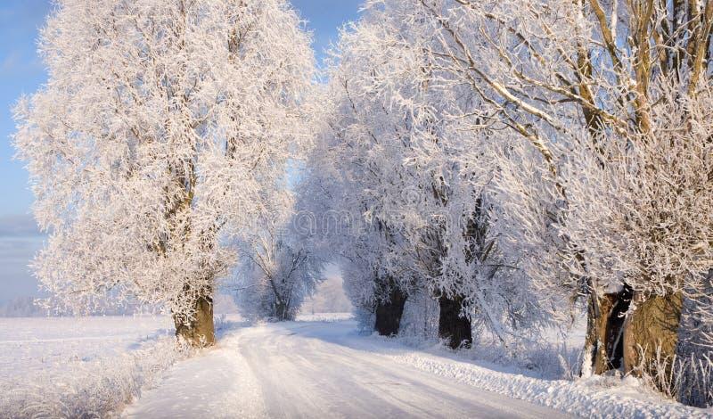Snowy-Straße lizenzfreie stockbilder