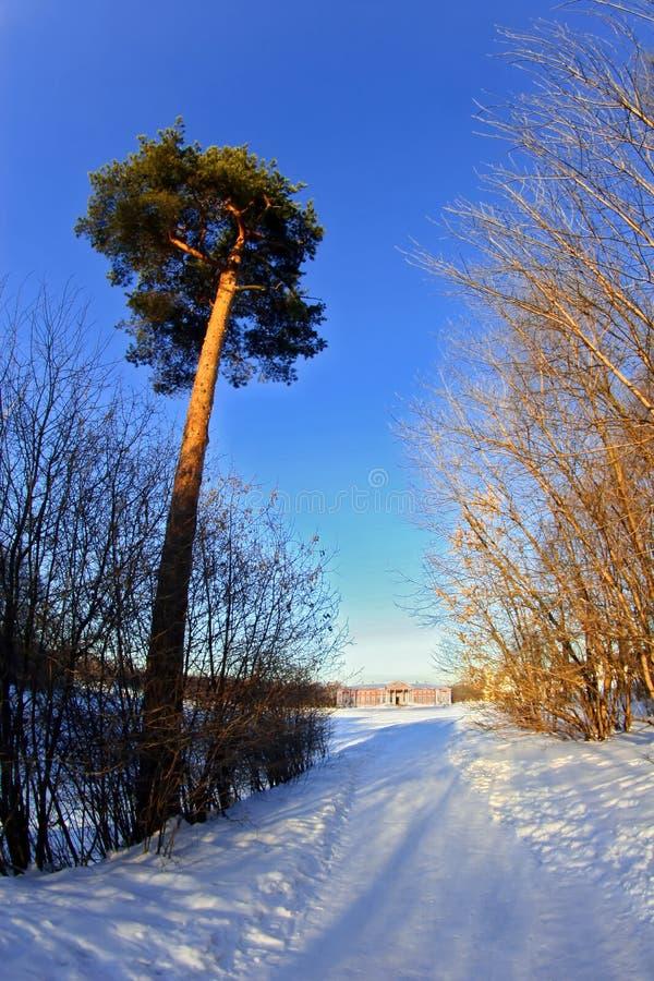 Snowy-Straße zum Palast stockfotos
