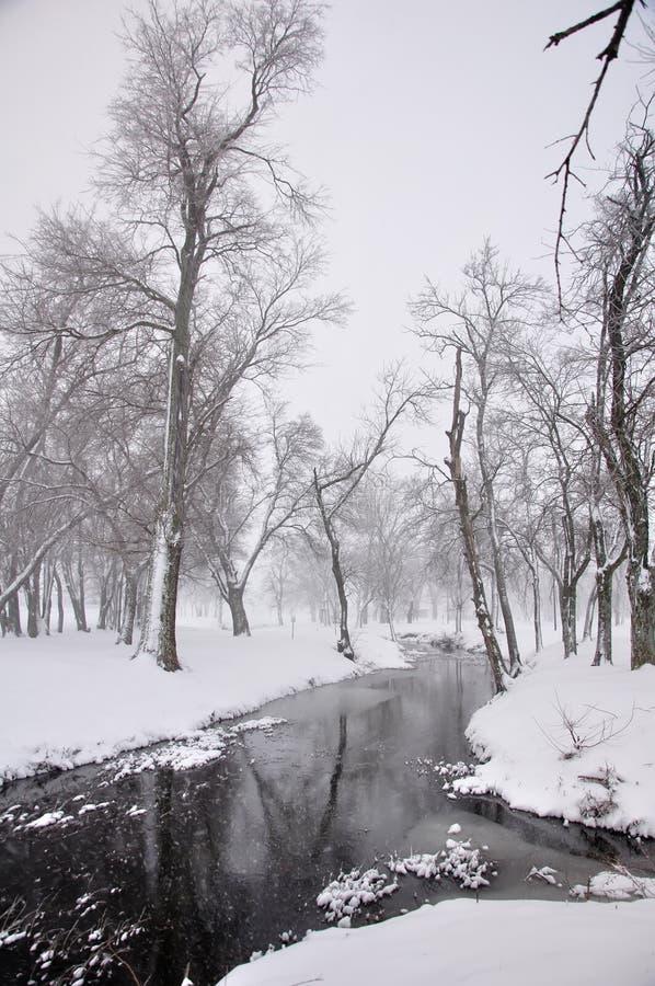 Download Snowy stream 2 stock image. Image of winter, seasonal - 12768395