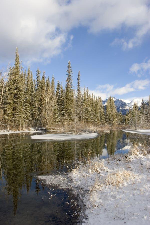 Snowy-Teich 2 stockbild