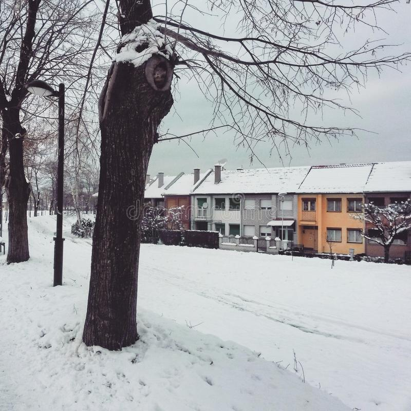 Snowy und buntes lizenzfreies stockfoto