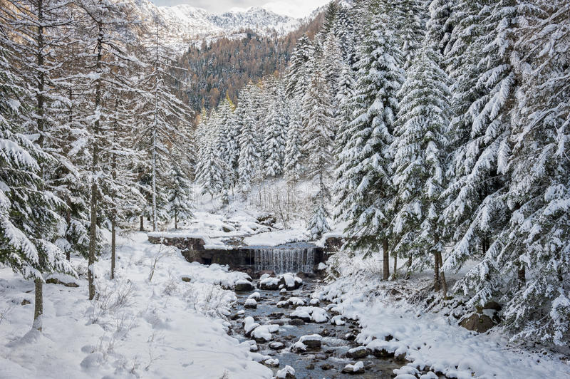 Download Snowy valley stock photo. Image of alpine, forest, lombardy - 35528516