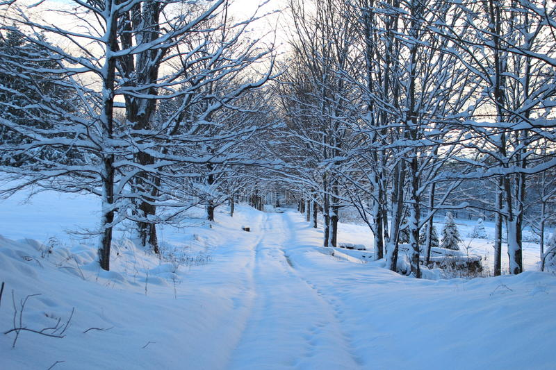Snowy Vermont Country Road royalty free stock photo
