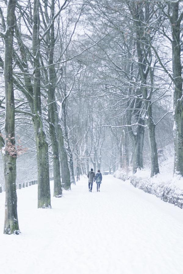 Snowy walk for couple in the park at Lousberg in Aachen, Germany. AACHEN, GERMANY - Snowy landscape at the hill Lousberg, couple, walk, winter, romantic, cold royalty free stock image