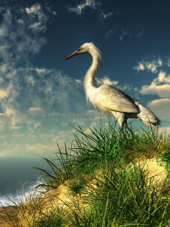 Egret on a Grassy Dune. A snowy white egret stands on a sand dune that overlooks the ocean. Below, waves crash against the shore. The egret looks out over the royalty free illustration