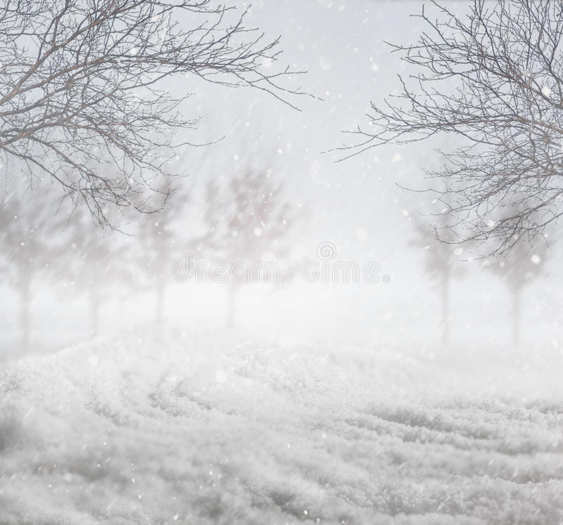 Snowy Winter Background Royalty Free Stock Photos