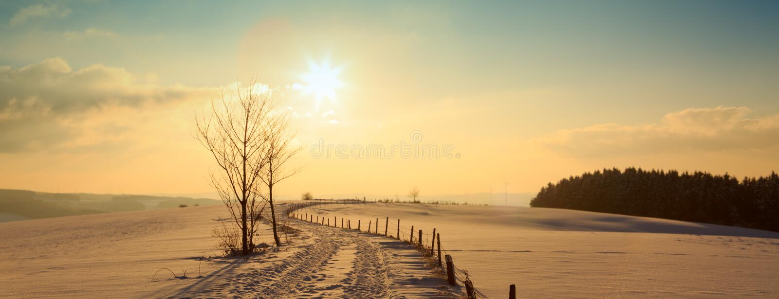 Winter sunset landscape with tree and road. Snowy winter Christmas Landscape.Winter sunset over the snow-covered tree stock photography