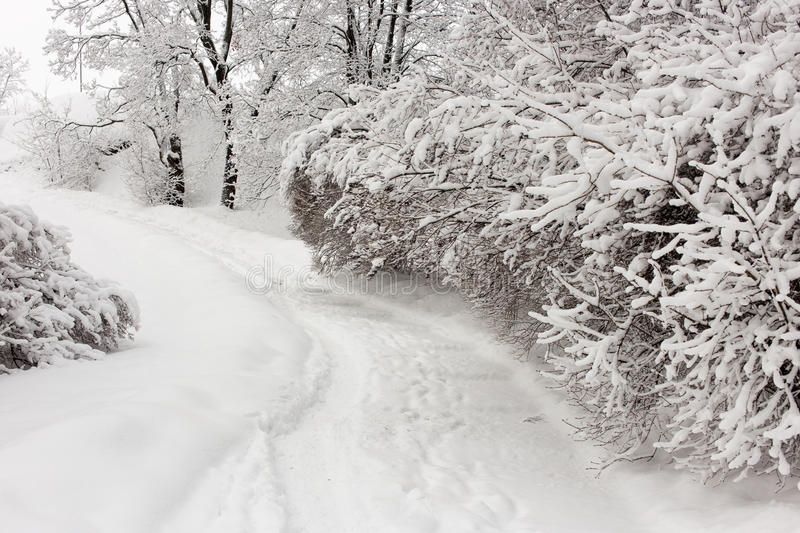 Snowy winter day stock image