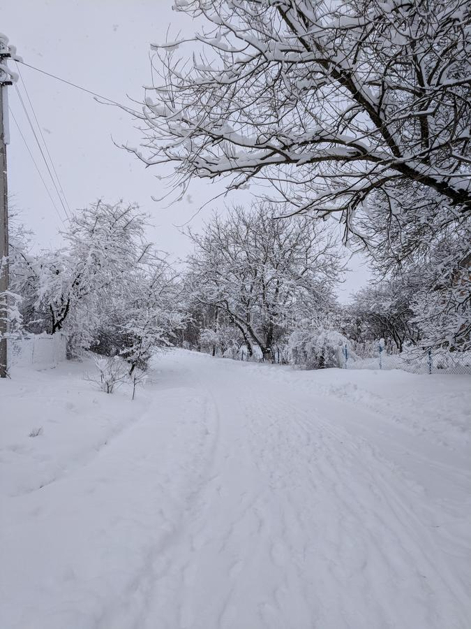 Snowy winter. fabulous mood. Snow. stock photography