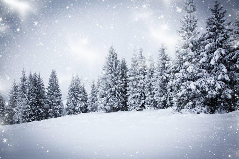 snowy winter landscape royalty free stock photo