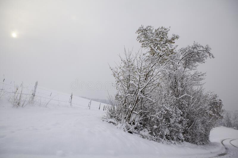 Snowy Winter Landscape. Seasonal Photography royalty free stock photo