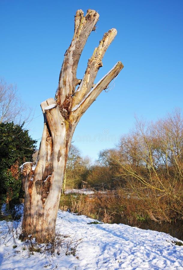 Snowy-Winter-Landschaft stockfoto