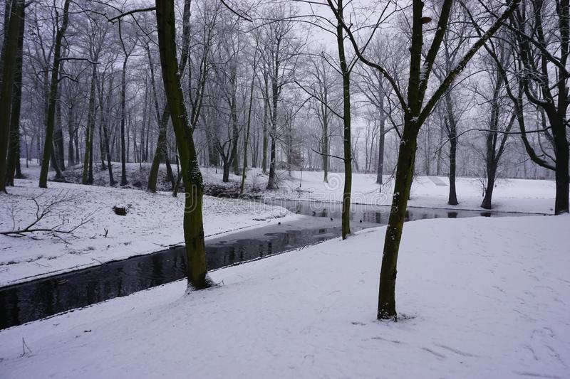 Winter in Park 1 stock images