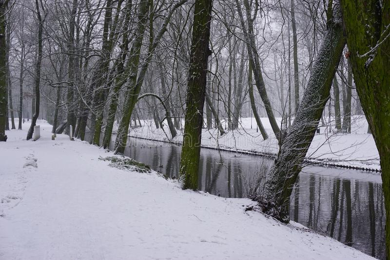 Winter in Park 9 stock photos