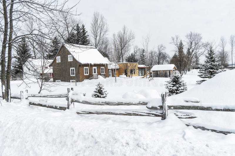 Snowy Winter scene cedar fence. Houses with trees on a snowyn day royalty free stock images