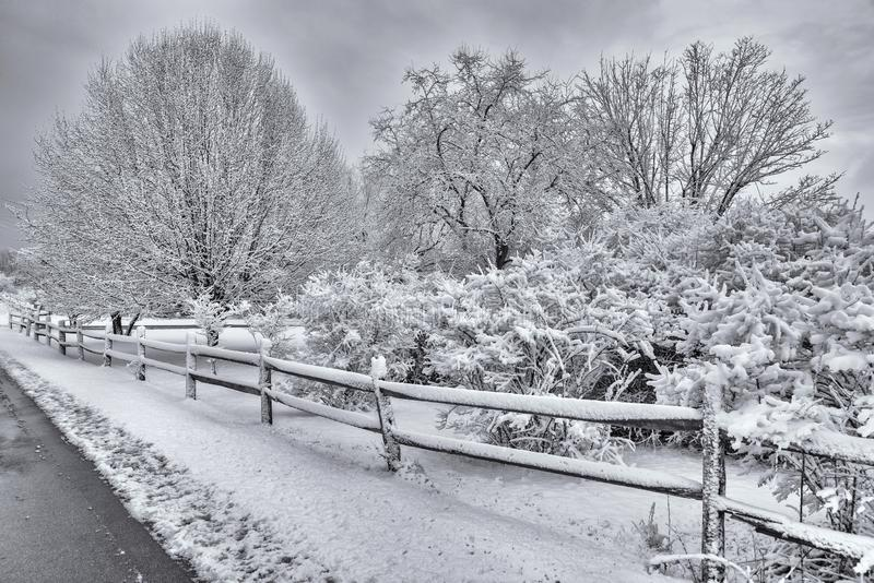 Snowy Winter Scene. Horizontal shot of a beautiful snowy winter scene stock image