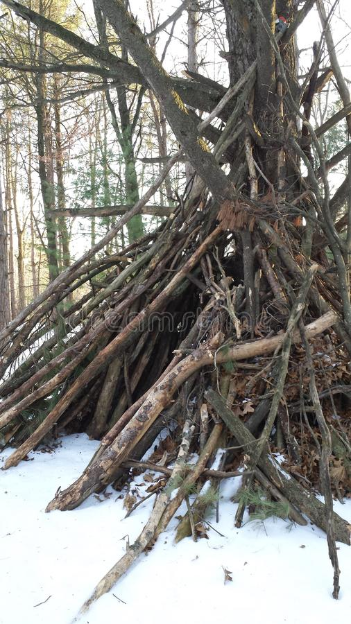 Snowy Wooden Teepee Frame. Wooden teepee in the winter woods stock photo
