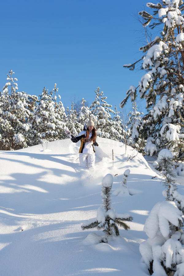 Download Snowy woodland stock photo. Image of coat, colorful, alone - 28828944