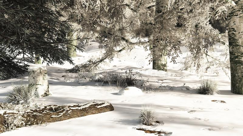 Download Snowy Woodland Glade stock illustration. Image of grass - 28472900