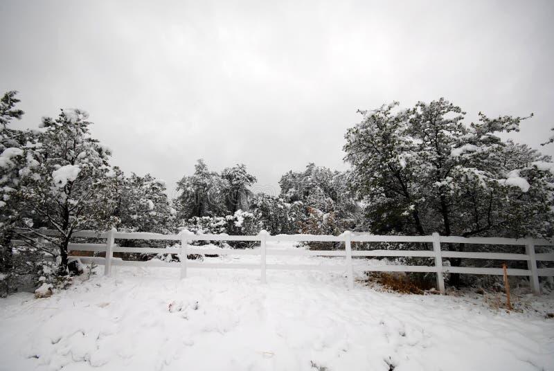 Snowy-Zaun stockfoto