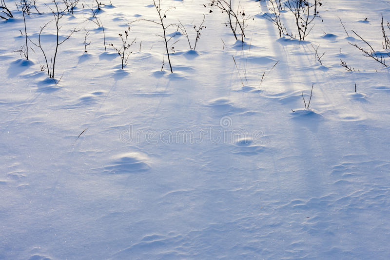 snowyttersida royaltyfria bilder