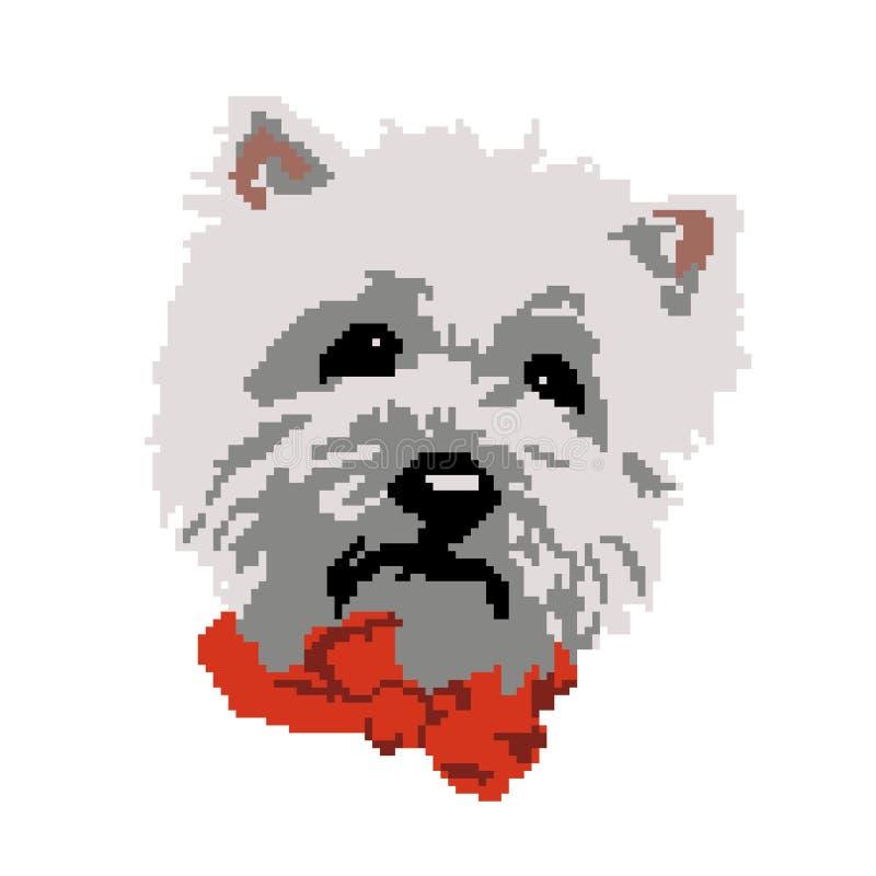 Snuit van het rassen de beige die Bichon Havana van de silhouethond, hoofd, in vierkanten, pixel wordt geschilderd vector illustratie