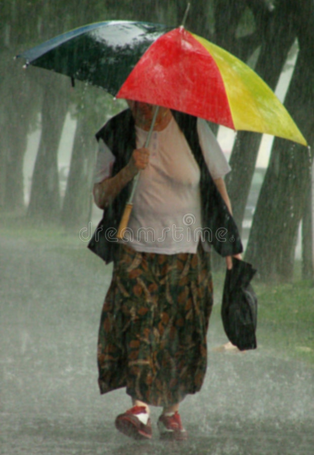 Soak / Rainy Day. Old woman with the big umbrella in the rain stock images