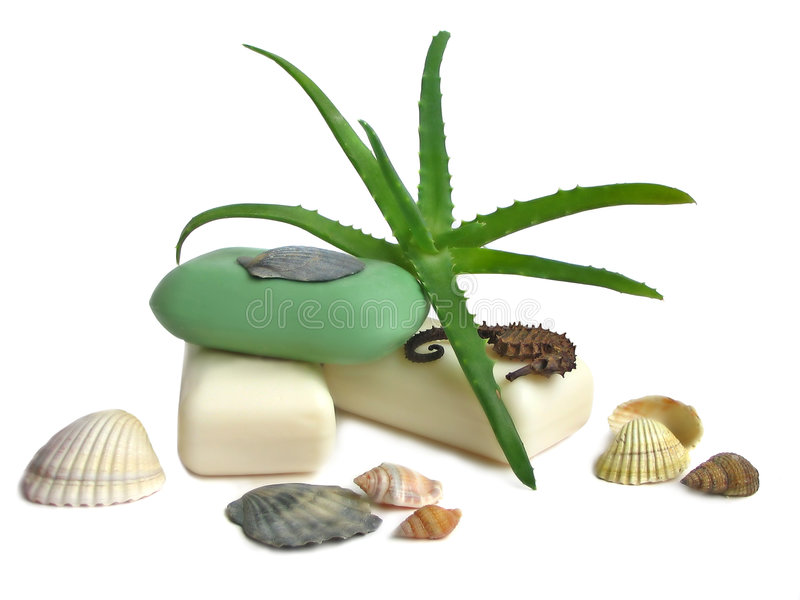 Soap with aloe vera leaves stock image