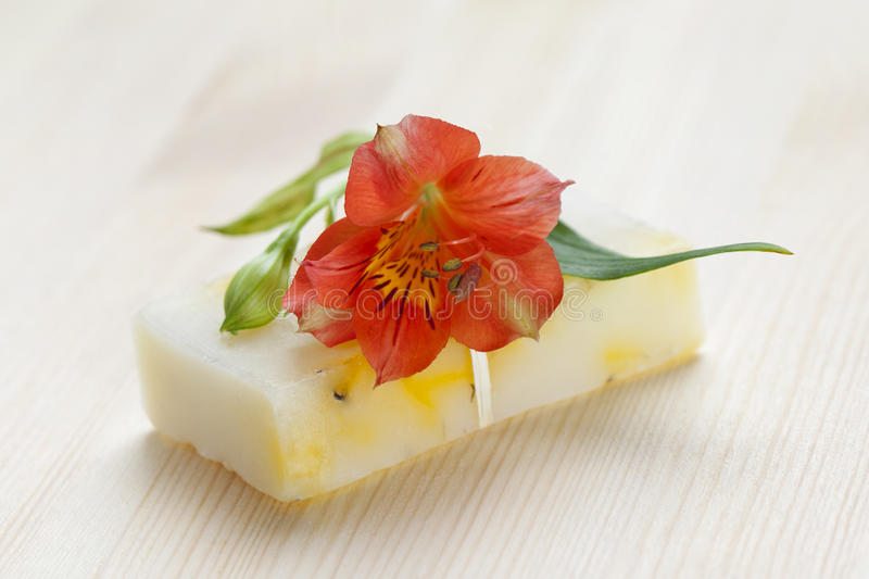 Download Soap Bar With Natural Ingredients Stock Image - Image: 25817389