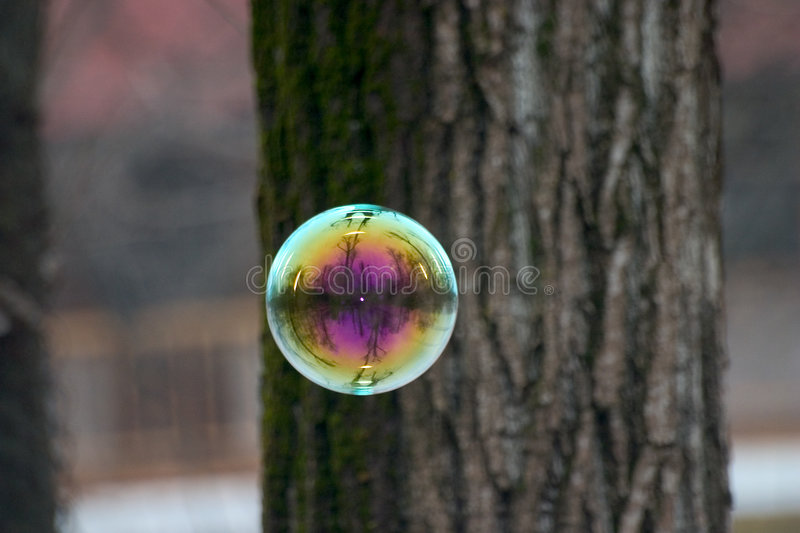 Download Soap Bubble stock photo. Image of bark, transparent, soap - 92744