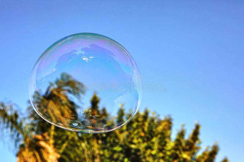 The soap bubble flies against the blue sky and palm trees.  stock photography