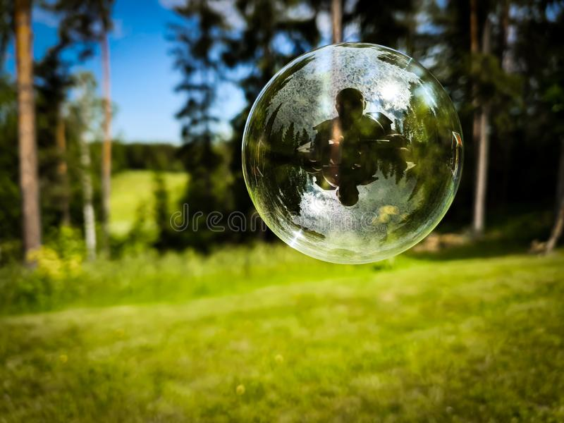 Soap bubble with green nature forest in the background stock photography