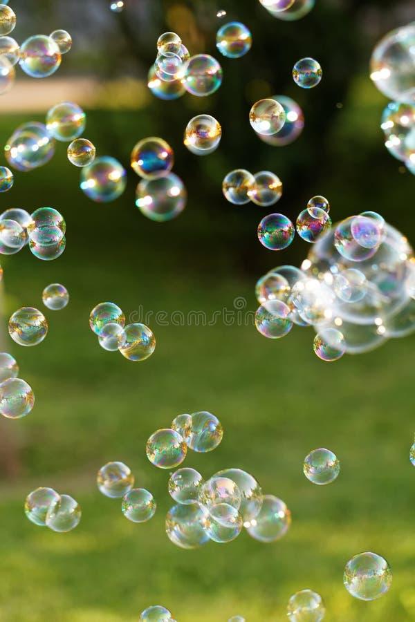 Free Soap Bubbles Stock Image - 55184141